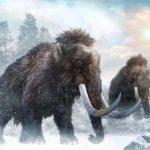 100万年以上前のマンモスのDNA解読