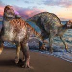 淡路島の地層から新種の恐竜の化石が発見されたそうです。
